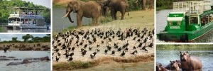6 Days Rwanda Uganda Gorilla Safari