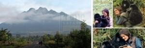Rwanda Safari Attractions