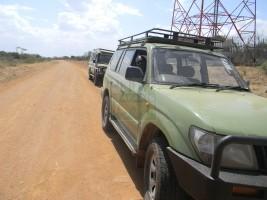 4 Days Uganda Gorilla & Wildlife Safari to Bwindi & Queen Elizabeth NP