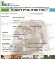 Gorilla permit in Rwanda