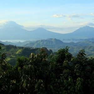 7 Perfect Reasons Why People Will Visit Rwanda in 2020